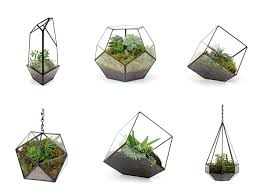 terrarium design interesting hanging terrarium wholesale hanging