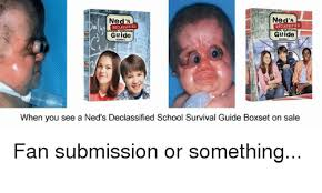 Meme Guide - ned s ned s declassified declassified guide guide when you see a