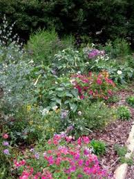 The Most Fragrant Plants - 25 best plant list fragrant plants images on pinterest garden
