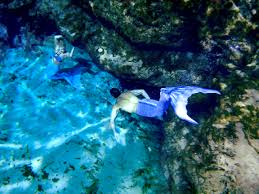 antonio padilla an in depth look into the mer man u2013 mermaid