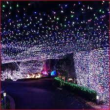 bulk outdoor string lights inviting outdoor globe string lights