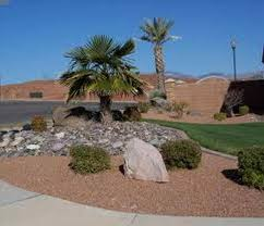 oasis landscapes in las vegas designed and built this low sunset
