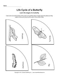 life cycle butterfly life cycle butterfly pinterest life