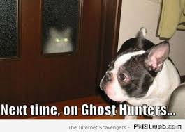 Meme Hunters - 28 next time on ghost hunters meme pmslweb