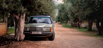 green mercedes green mercedes benz w123 parked near tree free stock photo