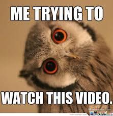 Video Meme - trying to watch sideways video by justingrayeduffield meme center