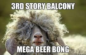 Beer Bong Meme - 3rd story balcony mega beer bong party sheep quickmeme