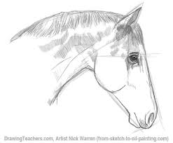learn horse drawing in pencil with this step by step drawing