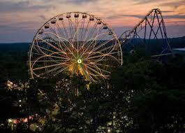 Bizarro Six Flags Great Adventure All Categories