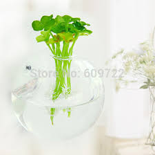 Hanging Glass Wall Vase Compare Prices On Clear Glass Wall Vase Online Shopping Buy Low