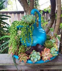 Hanging Succulent Planter by 529 Best Saavy Succulents Images On Pinterest Succulents Garden