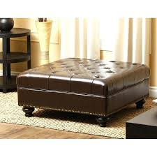 Ikea Storage Ottoman Bench Bed Bench Ikea Magnificent End Of Bed Storage Bench With Bedroom