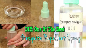 hindi diy one of the best mosquito repellent spray totally