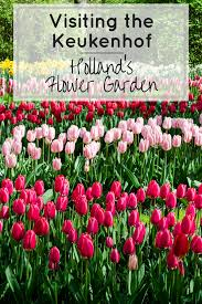 keukenhof flower gardens visiting the keukenhof holland u0027s flower garden a wanderlust