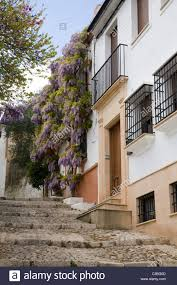typical traditional spanish house u0026 wisteria on hill back street