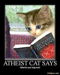 Meme Dawkins - mythical god meme atheist cat the dog delusion joke meme