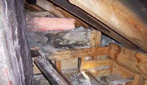 attic u0026 soffit ventilation installation in new jersey jun u0027s mold