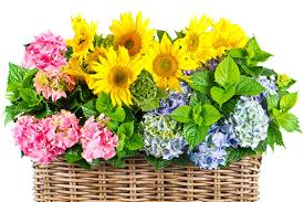 types of flower arrangements of flower arrangement