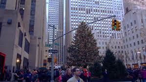new york february 2 2015 a panning of the tree