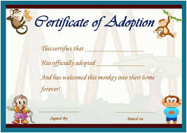 toy adoption certificate template 13 free word templates