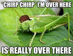 Crickets Chirping Meme - chirp chirp i m over here is really over there scumbag cricket