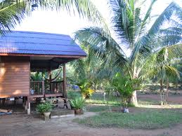 thailand island yoga retreat review ksenia u0027s blog