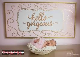 pink nursery ideas pink and gold nursery ideas decor tracey s fancy