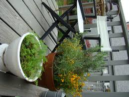 Gardening Ideas For Small Balcony by Small Space Gardening Ideas 11048