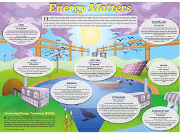 How To Find Negative Energy At Home Energy Matters Conserving Energy And Wildlife All About Birds