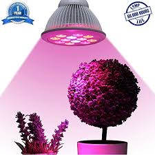 where to buy indoor grow lights industrial grade led grow light essential choice full spectrum
