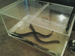 Make Your Own Coffee Table by How To Make An Aquarium Coffee Table