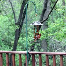 homemade 4x4 squirrel deterrent bird feeder bird feeder plant hanger cement a