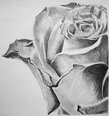 317 best art pencil images on pinterest pencil ap drawing and