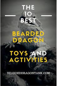 Bearded Dragon Behavior Before Shedding by Best 25 Bearded Dragon Ideas On Pinterest Bearded Dragon