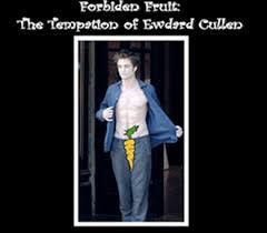 Hit The Floor Fanfiction - forbiden fruit the tempation of edward cullen fan fic tv tropes