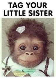 Little Sister Meme - tag your little sister dank meme on me me