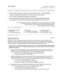 resume sample for marketing executive marketing manager resume