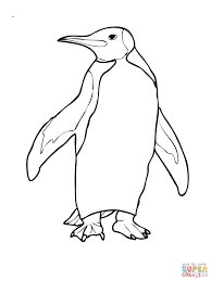 king penguin coloring page penguin doodle pinterest penguins