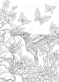 coloring pictures of hibiscus flowers coloring page of hummingbird butterflies and hibiscus flowers