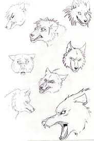 cartoon wolf sketches by inarium on deviantart