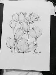 tulips pen drawing youtube