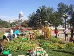 Urban Garden Denver - 67 best urban agriculture images on pinterest urban agriculture
