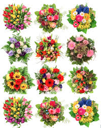 flower of the month club flower of the month club floralsection