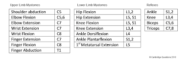 Biceps Reflexes 2 Neurological Assessment And Diagnostics