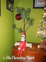 Charlie Brown And Christmas Tree - the elf and the charlie brown christmas tree the elf on the shelf