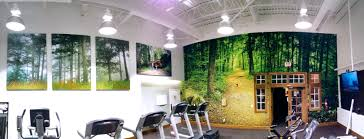 custom decor and the nature of wall murals lexjet blog custom decor and the nature of wall murals