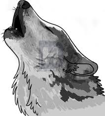 how to draw a howling wolf step by step drawing guide by