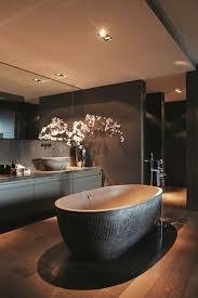 11 best toiletten images on pinterest toilets bathroom ideas
