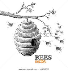 bee hive sketch stock images royalty free images u0026 vectors