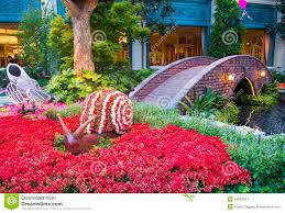 Season Botanic Gardens Bellagio Hotel Conservatory Botanical Gardens Editorial Stock